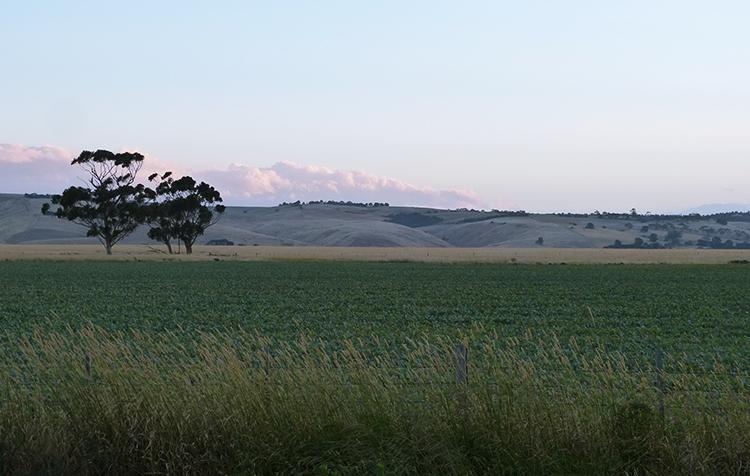 Melbourne Campervan Hire